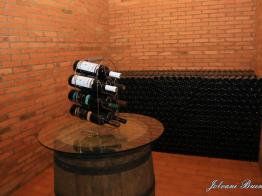 Vinhos Girola