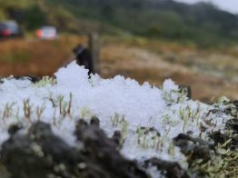 Santa Catarina registra neve e chuva congelada na Serra